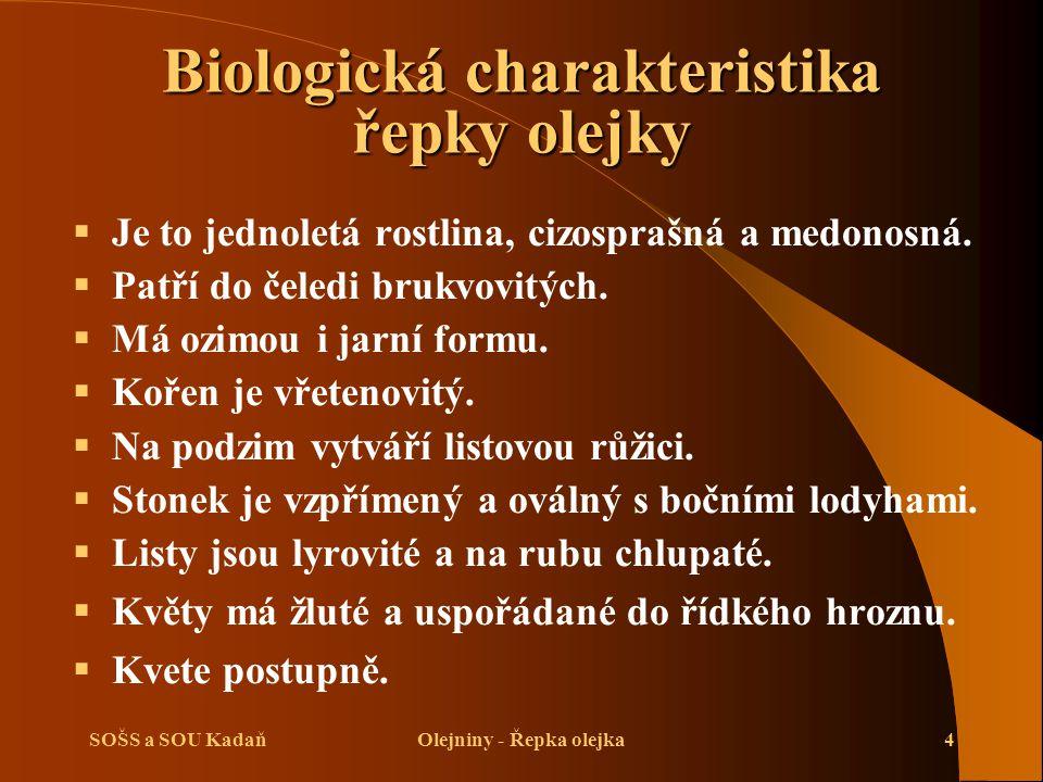 Biologická charakteristika řepky olejky