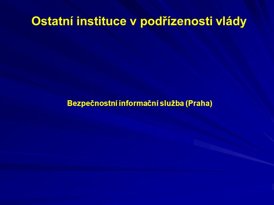 Ostatní instituce v podřízenosti vlády