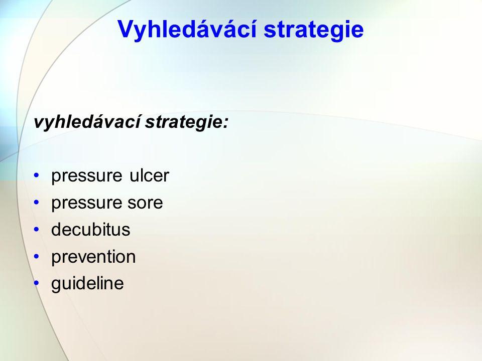 Vyhledávácí strategie