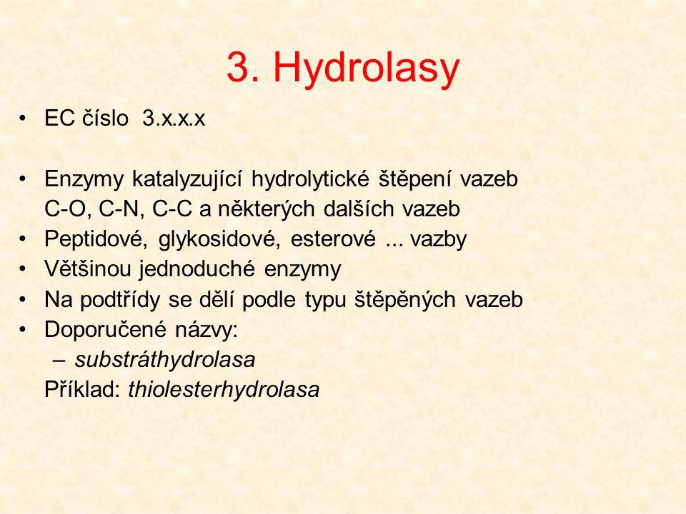 3. Hydrolasy EC číslo 3.x.x.x. Enzymy katalyzující hydrolytické štěpení vazeb. C-O, C-N, C-C a některých dalších vazeb.