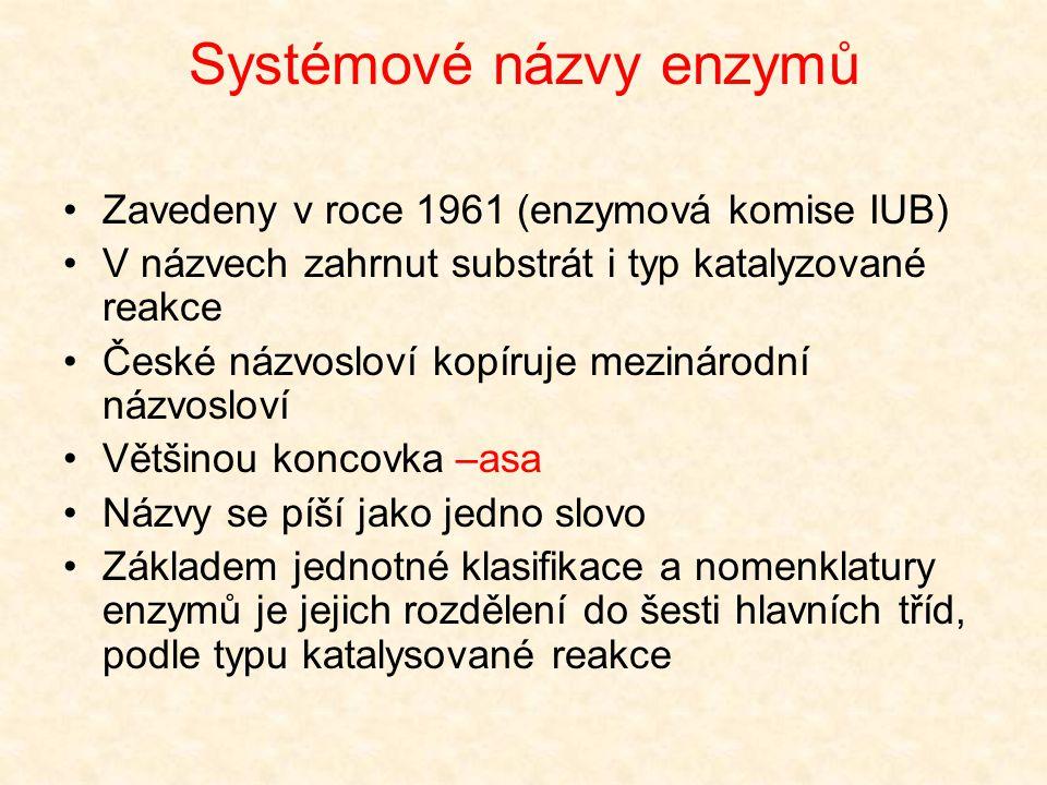 Systémové názvy enzymů