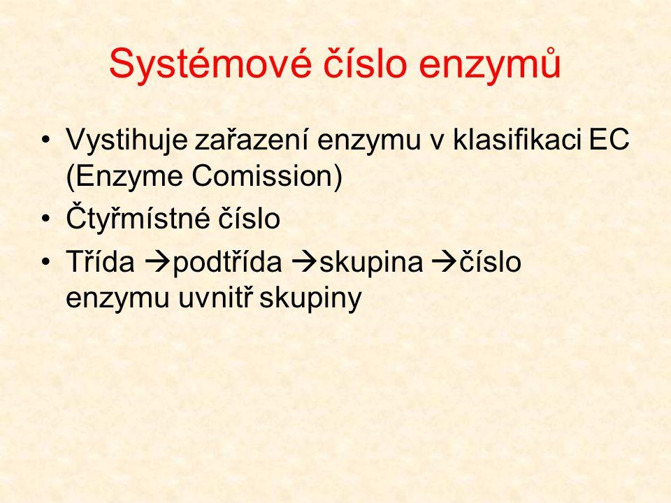 Systémové číslo enzymů