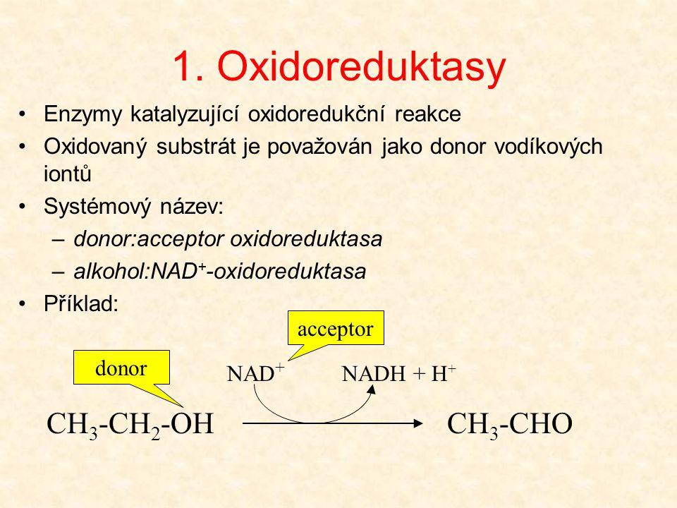 1. Oxidoreduktasy CH3-CH2-OH CH3-CHO