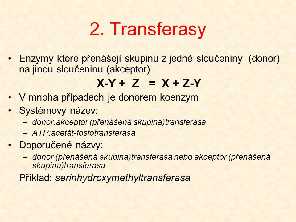 2. Transferasy Enzymy které přenášejí skupinu z jedné sloučeniny (donor) na jinou sloučeninu (akceptor)
