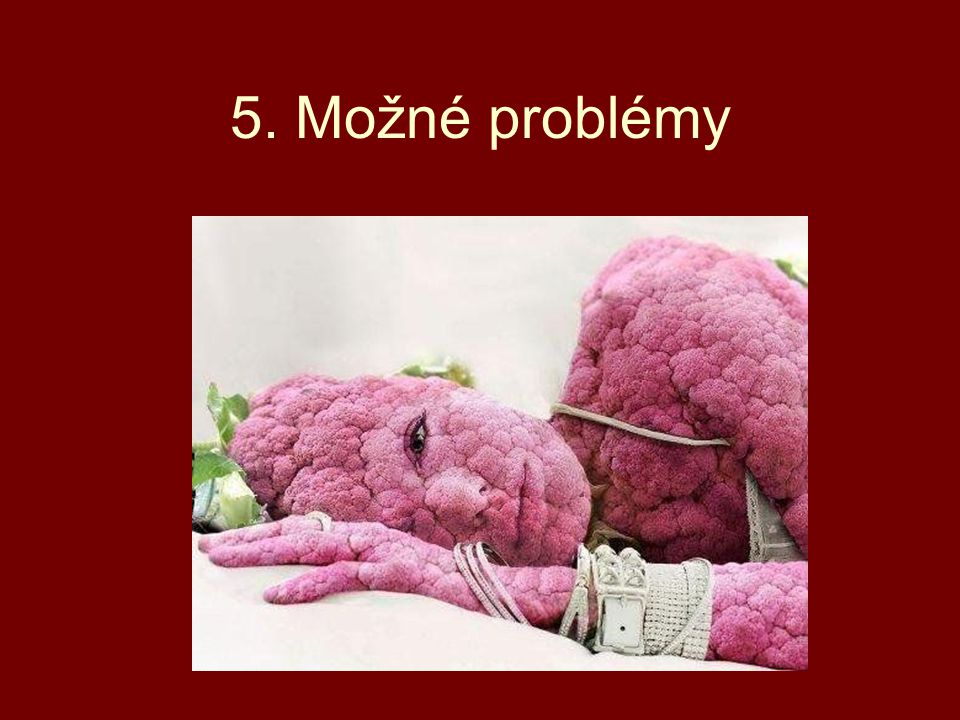 5. Možné problémy
