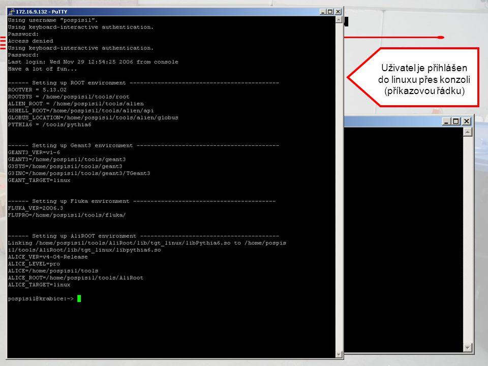 Uživatel je přihlášen do linuxu přes konzoli (příkazovou řádku)