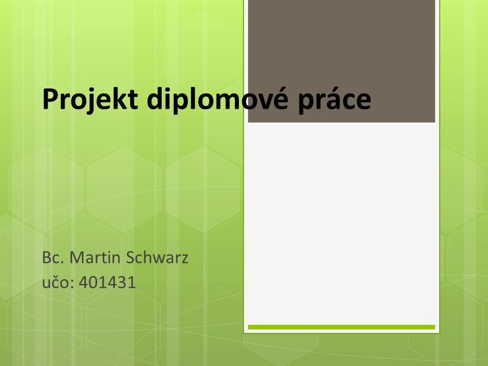 Projekt diplomové práce