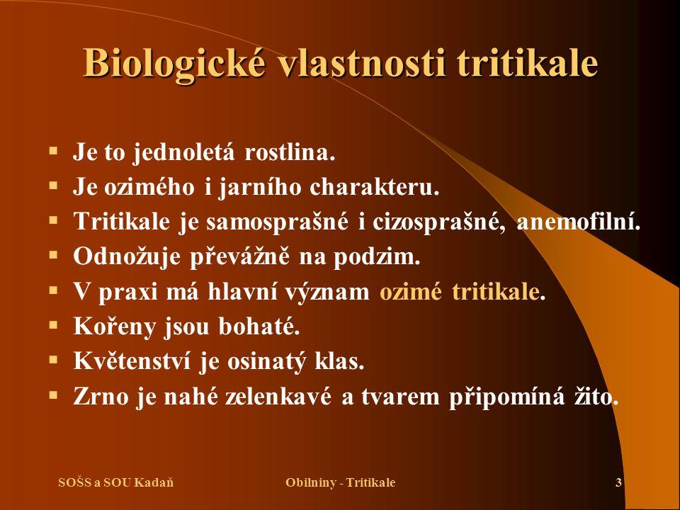 Biologické vlastnosti tritikale