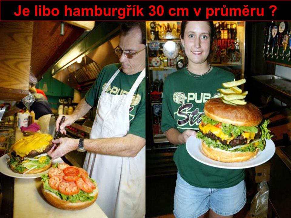 Je libo hamburgřík 30 cm v průměru