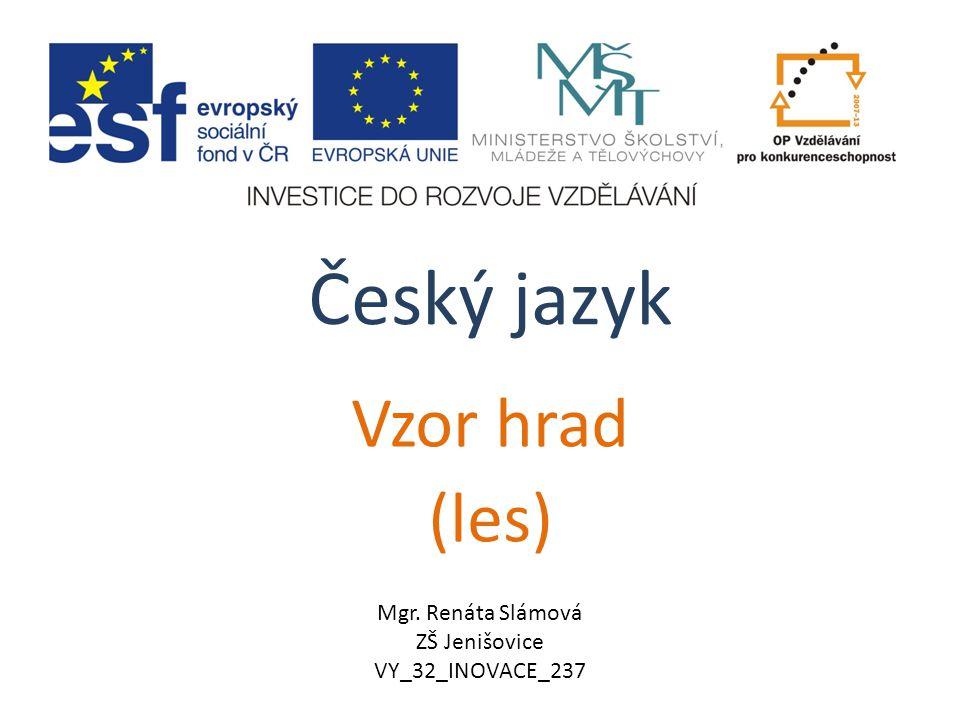 Český jazyk Vzor hrad (les) Mgr. Renáta Slámová ZŠ Jenišovice