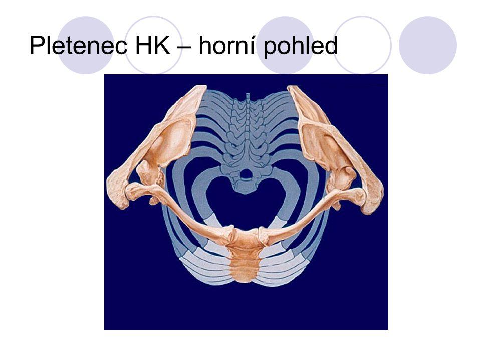 Pletenec HK – horní pohled