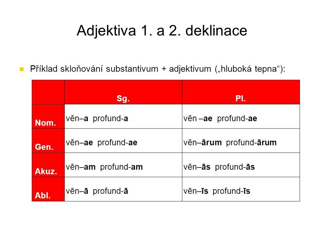 """Adjektiva 1. a 2. deklinace Příklad skloňování substantivum + adjektivum (""""hluboká tepna ): Sg. Pl."""