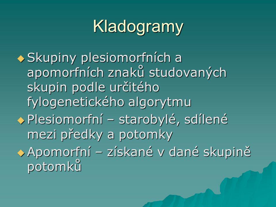Kladogramy Skupiny plesiomorfních a apomorfních znaků studovaných skupin podle určitého fylogenetického algorytmu.