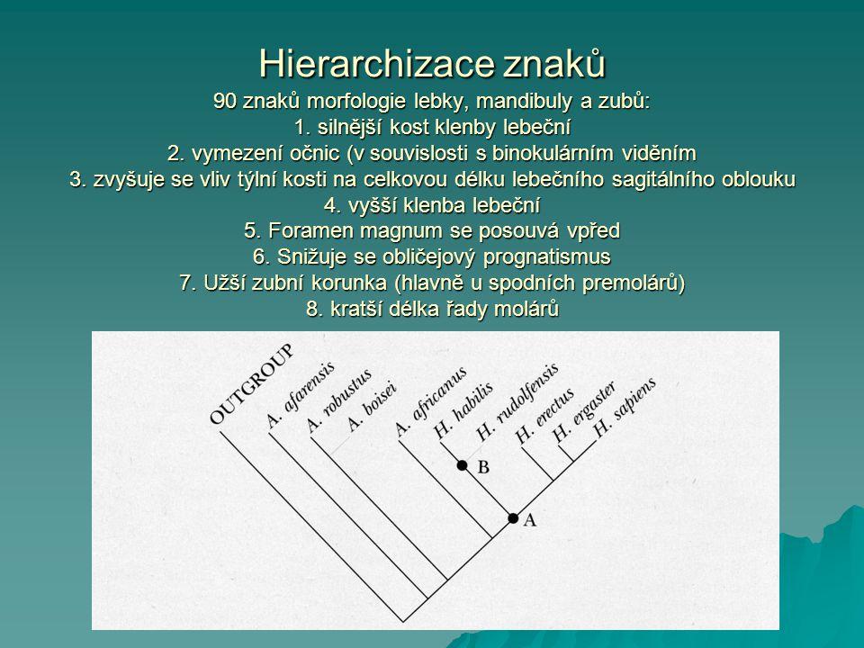 Hierarchizace znaků 90 znaků morfologie lebky, mandibuly a zubů: 1