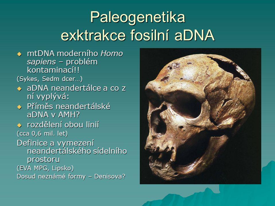 Paleogenetika exktrakce fosilní aDNA