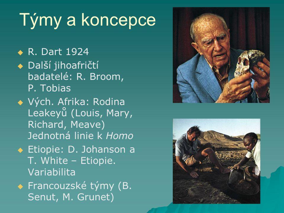 Týmy a koncepce R. Dart 1924. Další jihoafričtí badatelé: R. Broom, P. Tobias.
