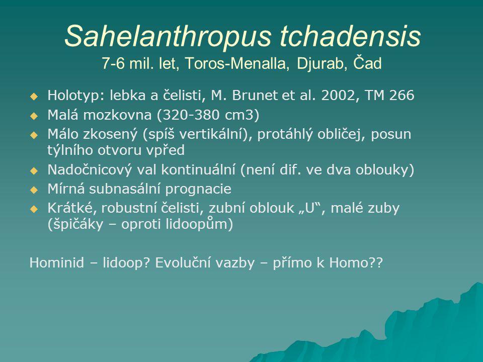 Sahelanthropus tchadensis 7-6 mil. let, Toros-Menalla, Djurab, Čad