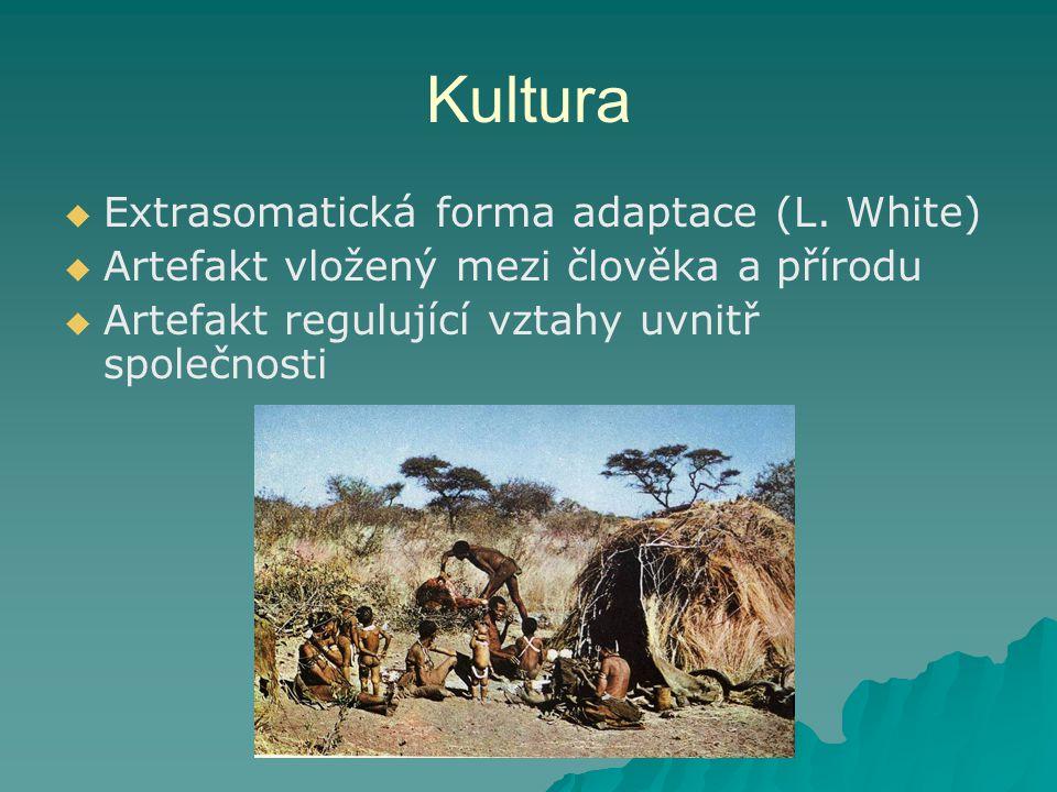 Kultura Extrasomatická forma adaptace (L. White)