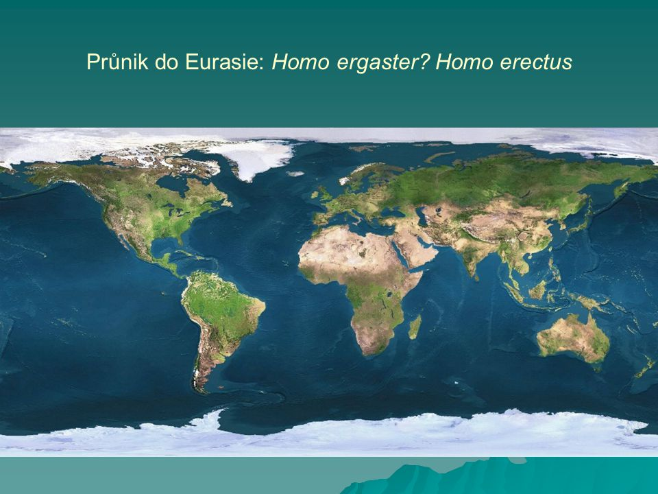 Průnik do Eurasie: Homo ergaster Homo erectus