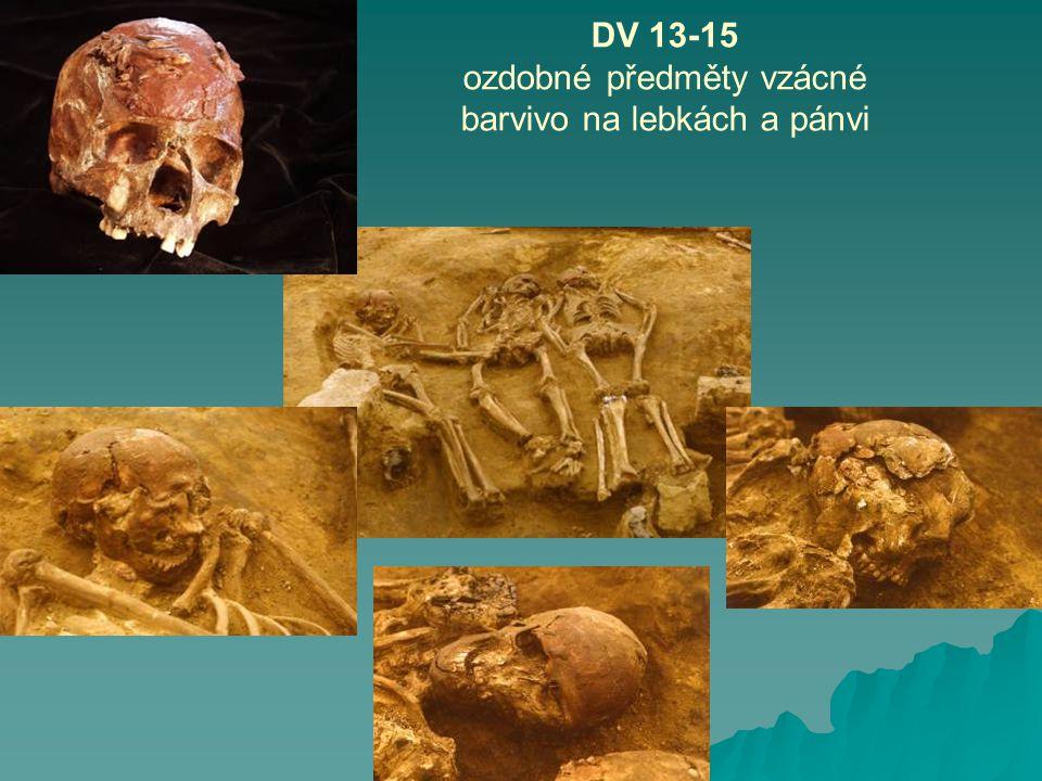 DV 13-15 ozdobné předměty vzácné barvivo na lebkách a pánvi