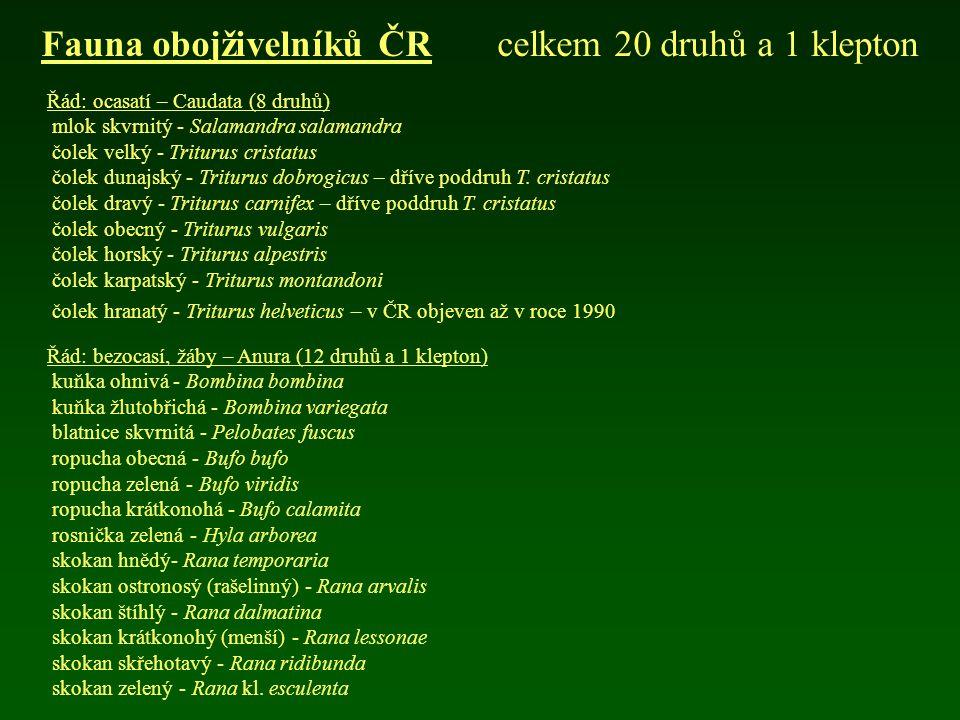 Fauna obojživelníků ČR celkem 20 druhů a 1 klepton