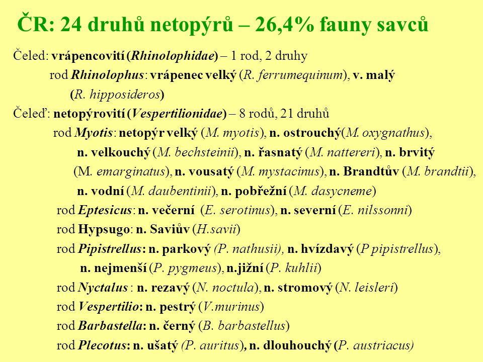 ČR: 24 druhů netopýrů – 26,4% fauny savců