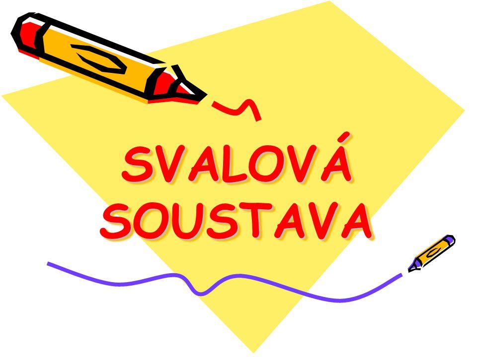 SVALOVÁ SOUSTAVA