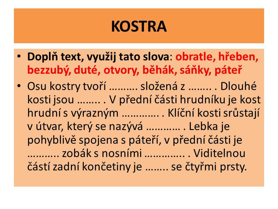 KOSTRA Doplň text, využij tato slova: obratle, hřeben, bezzubý, duté, otvory, běhák, sáňky, páteř.