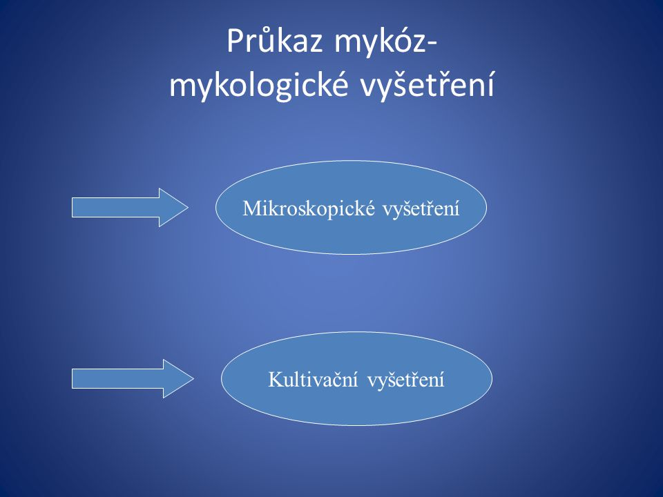 Průkaz mykóz- mykologické vyšetření