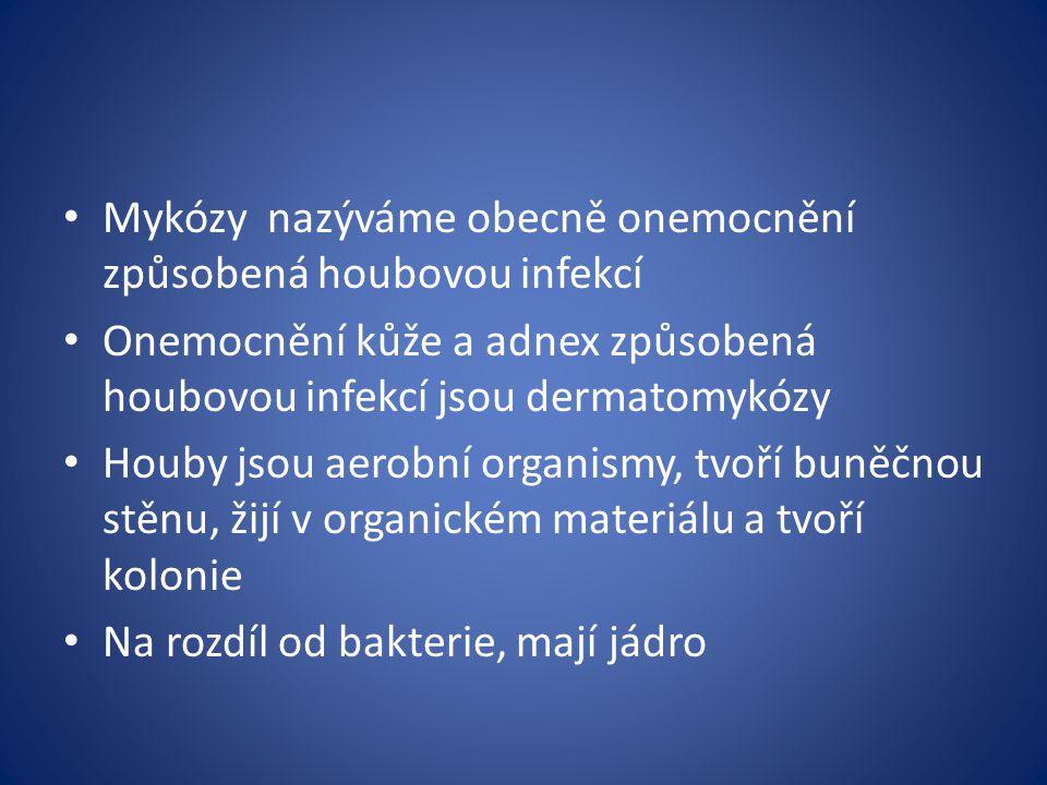 Mykózy nazýváme obecně onemocnění způsobená houbovou infekcí