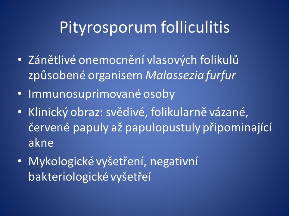 Pityrosporum folliculitis