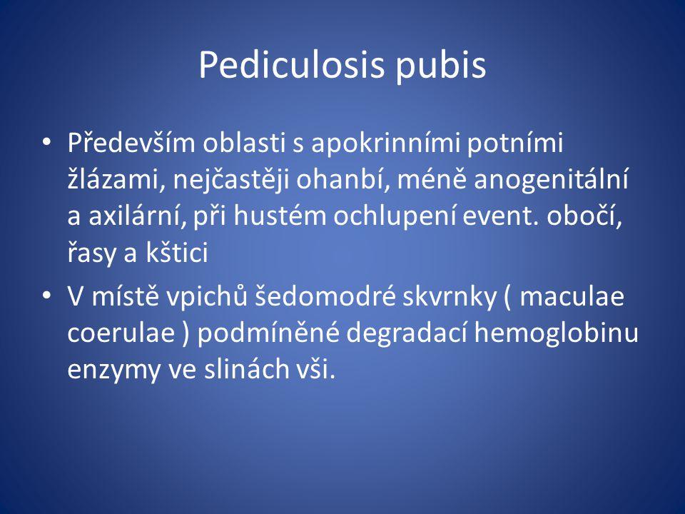 Pediculosis pubis
