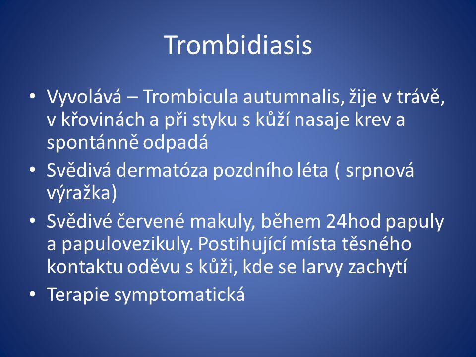 Trombidiasis Vyvolává – Trombicula autumnalis, žije v trávě, v křovinách a při styku s kůží nasaje krev a spontánně odpadá.