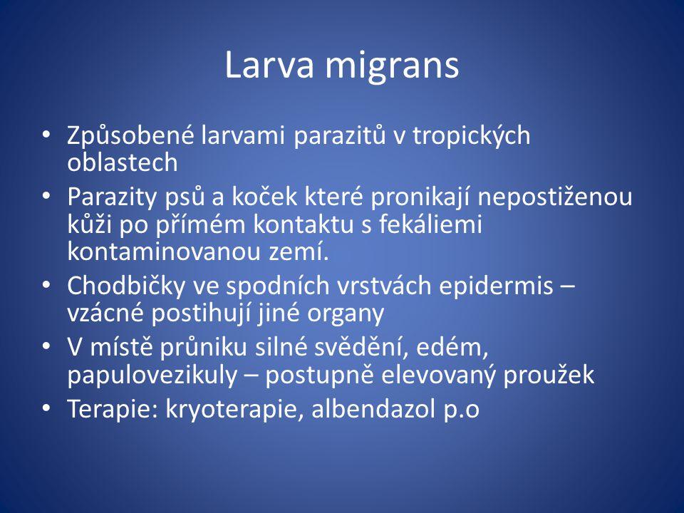 Larva migrans Způsobené larvami parazitů v tropických oblastech