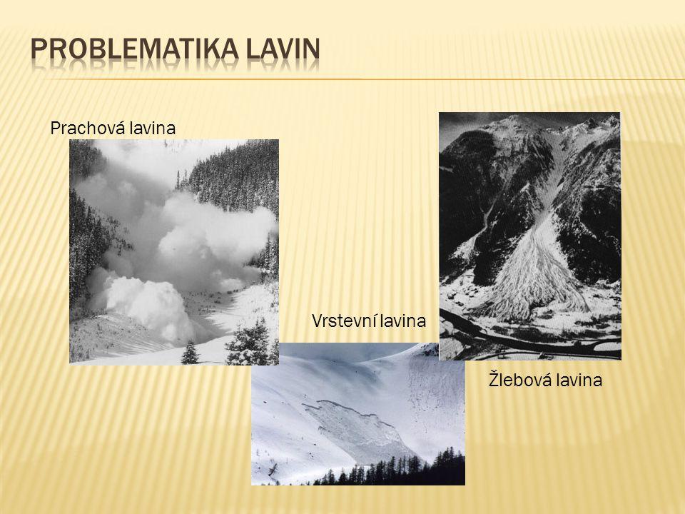 Problematika lavin Prachová lavina Vrstevní lavina Žlebová lavina