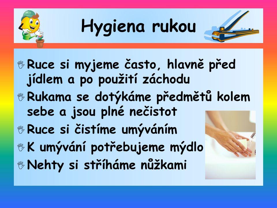Hygiena rukou Ruce si myjeme často, hlavně před jídlem a po použití záchodu. Rukama se dotýkáme předmětů kolem sebe a jsou plné nečistot.