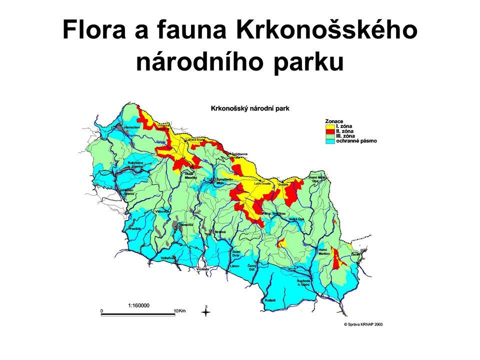 Flora a fauna Krkonošského národního parku