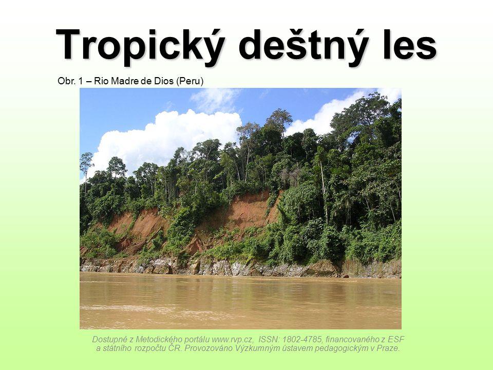 Tropický deštný les Obr. 1 – Rio Madre de Dios (Peru)