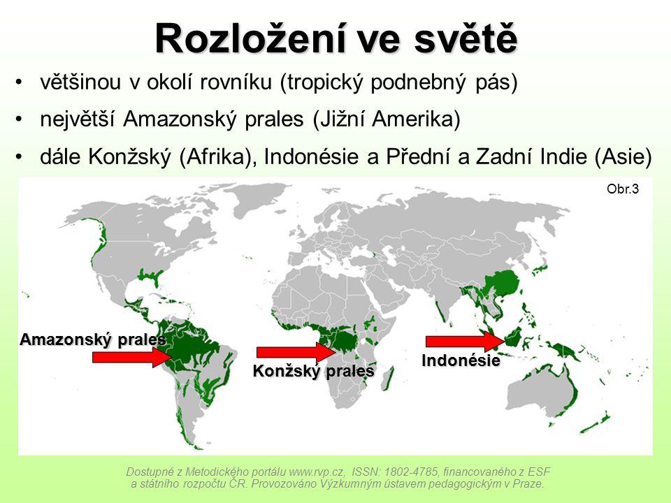 Rozložení ve světě většinou v okolí rovníku (tropický podnebný pás)