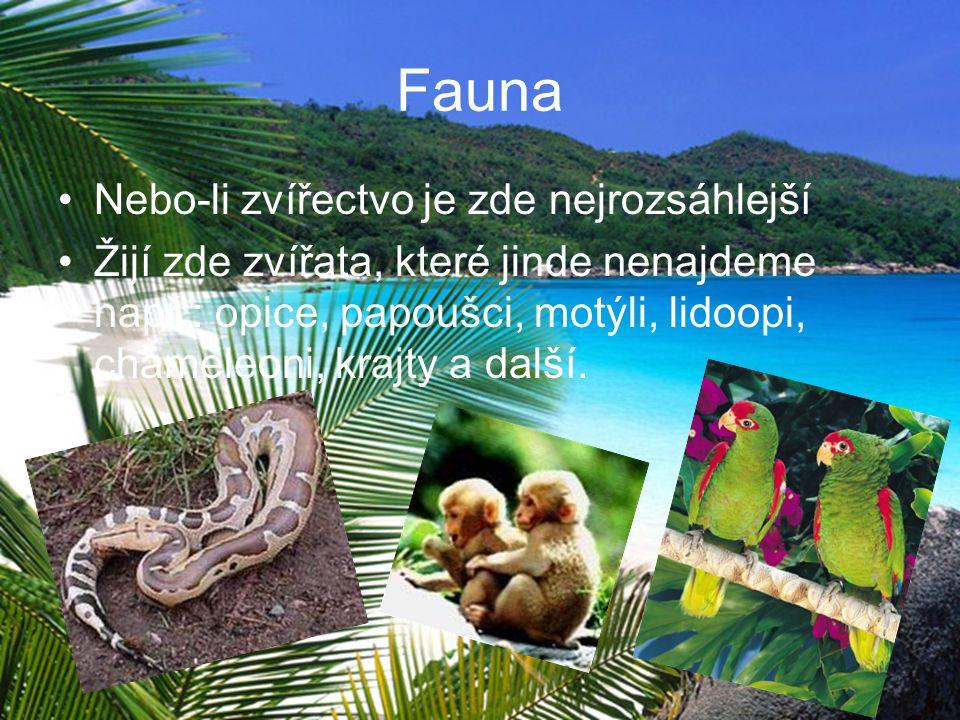 Fauna Nebo-li zvířectvo je zde nejrozsáhlejší