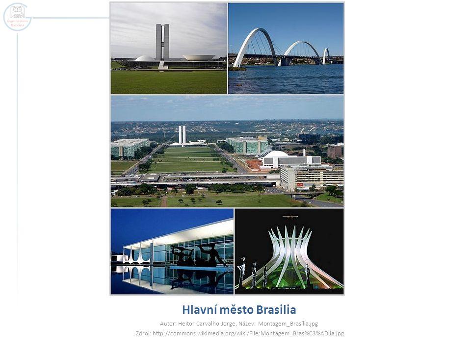 Autor: Heitor Carvalho Jorge, Název: Montagem_Brasília.jpg