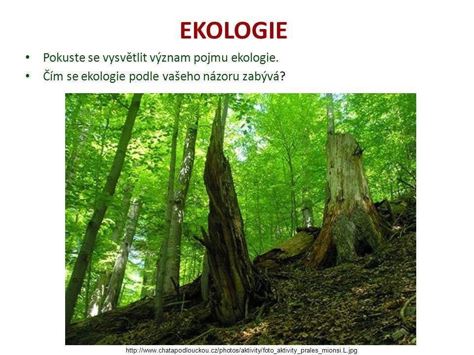 EKOLOGIE Pokuste se vysvětlit význam pojmu ekologie.