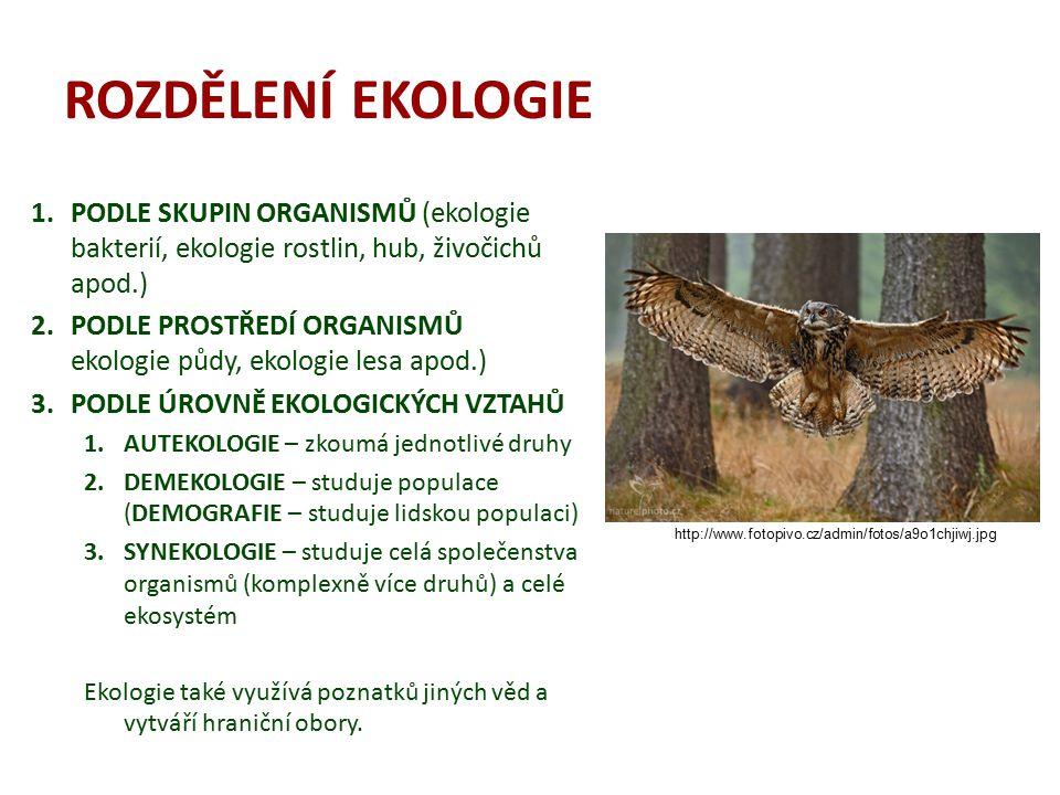 ROZDĚLENÍ EKOLOGIE PODLE SKUPIN ORGANISMŮ (ekologie bakterií, ekologie rostlin, hub, živočichů apod.)
