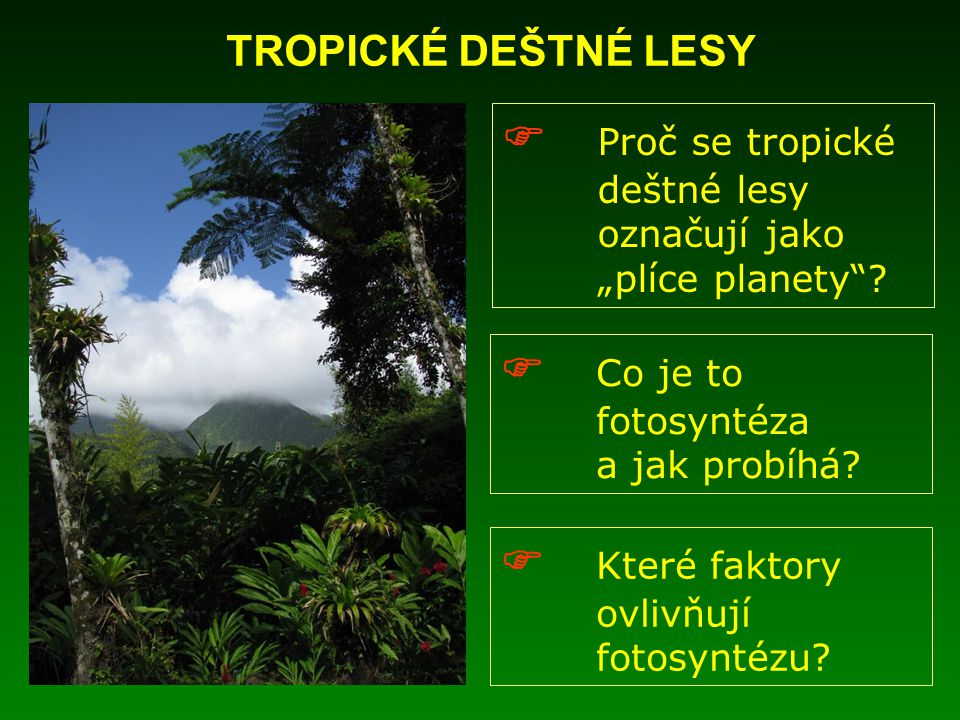  Proč se tropické deštné lesy