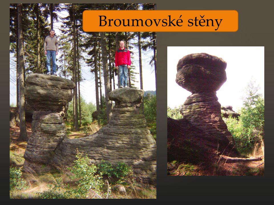 Broumovské stěny