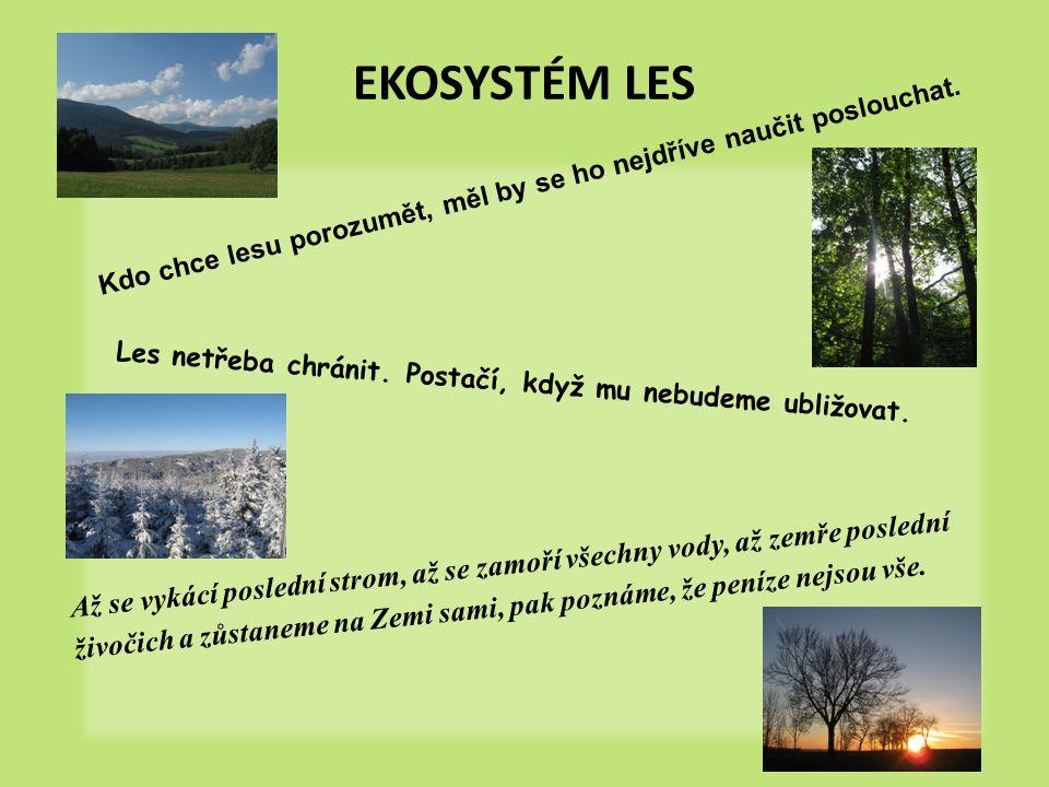 EKOSYSTÉM LES Kdo chce lesu porozumět, měl by se ho nejdříve naučit poslouchat. Les netřeba chránit. Postačí, když mu nebudeme ubližovat.