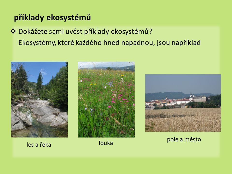 příklady ekosystémů Dokážete sami uvést příklady ekosystémů
