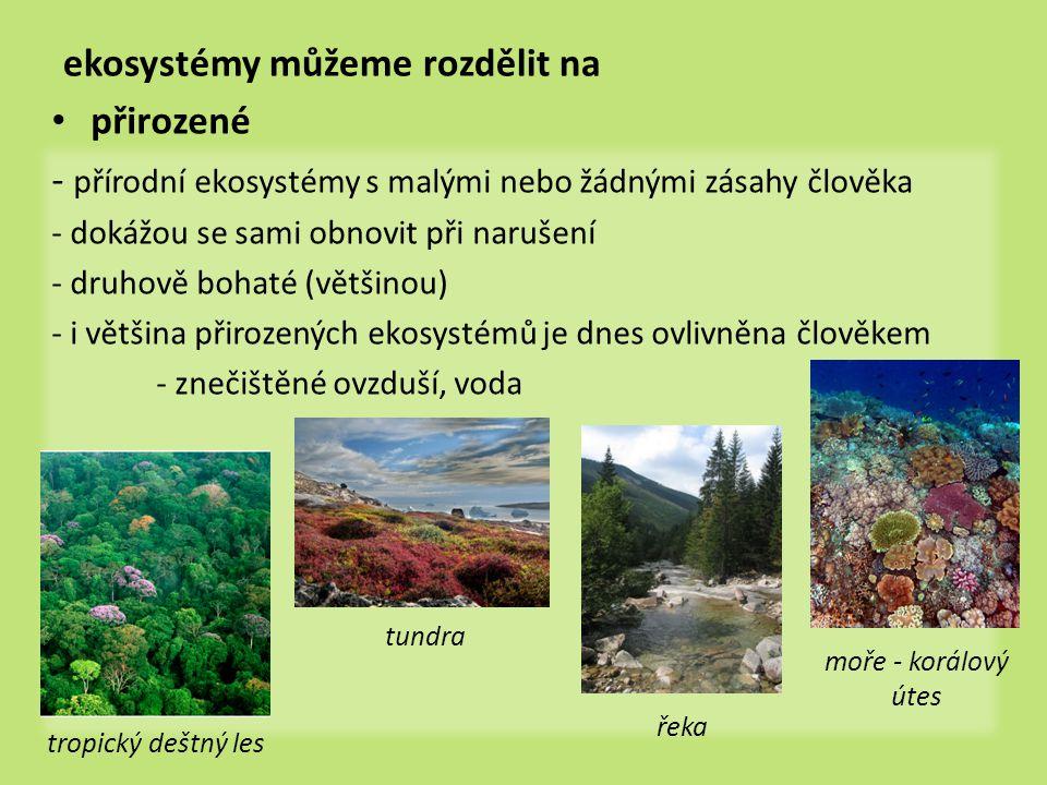 ekosystémy můžeme rozdělit na