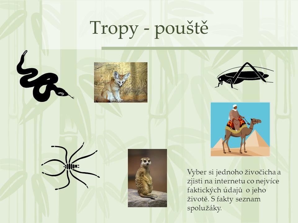 Tropy - pouště Vyber si jednoho živočicha a zjisti na internetu co nejvíce faktických údajů o jeho životě.