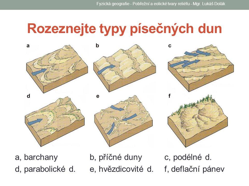 Rozeznejte typy písečných dun